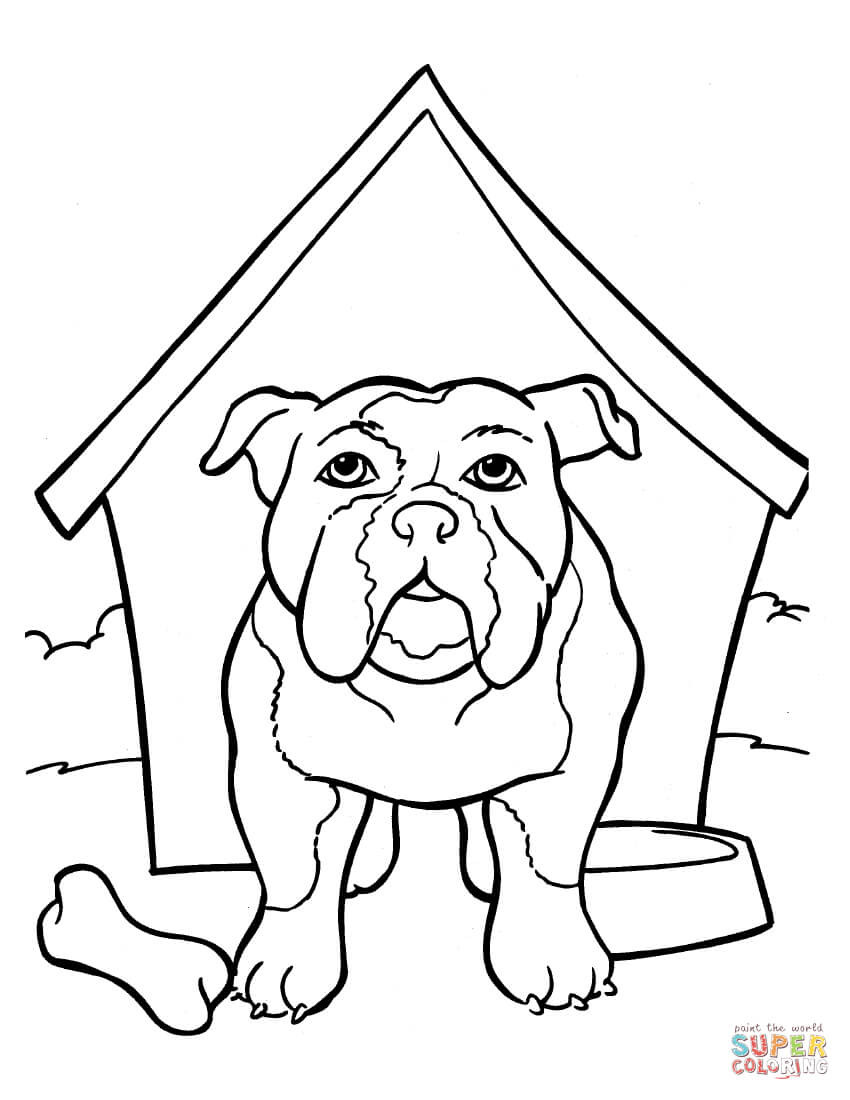 bulldog coloring page english bulldog coloring pages at getcoloringscom free bulldog page coloring