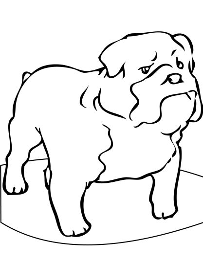 bulldog coloring page georgia english bulldog coloring pages part 3 page coloring bulldog