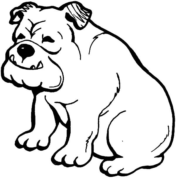 bulldog coloring page happy bulldog coloring pages best place to color coloring bulldog page
