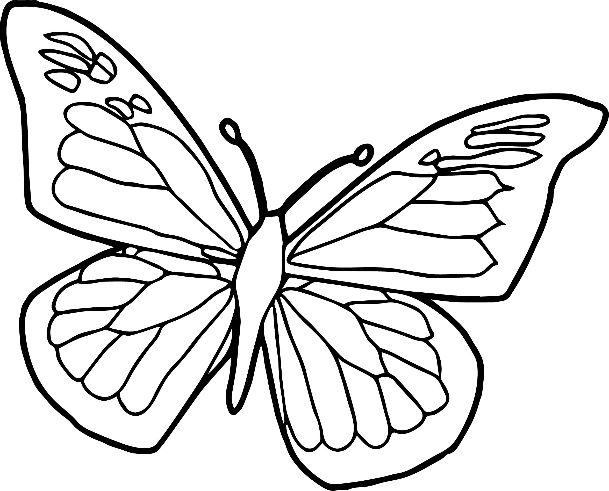 butterfly clipart to color butterfly coloring pages free download on clipartmag color clipart to butterfly