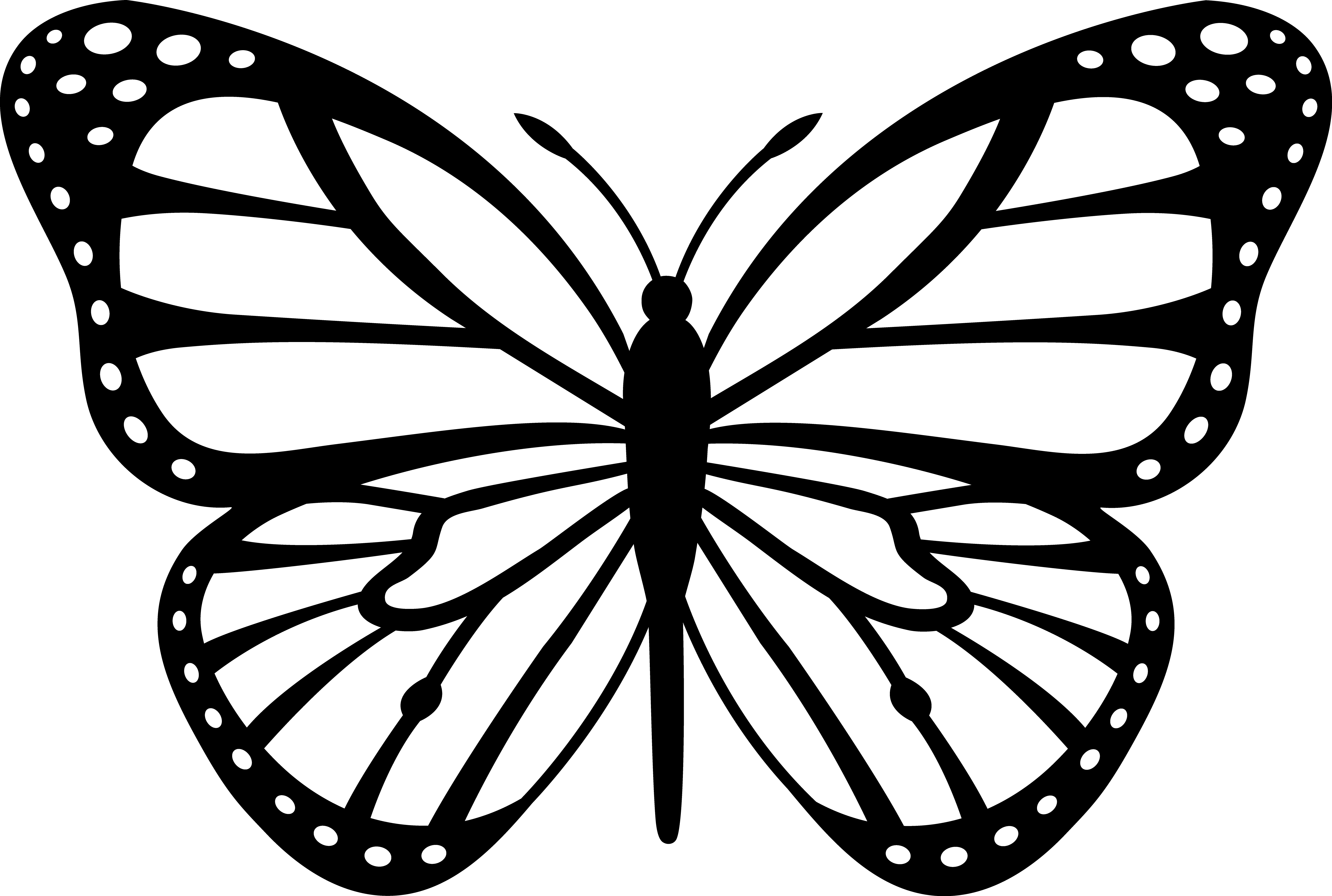 butterfly clipart to color butterfly outline clip art jos gandos coloring pages for clipart butterfly to color