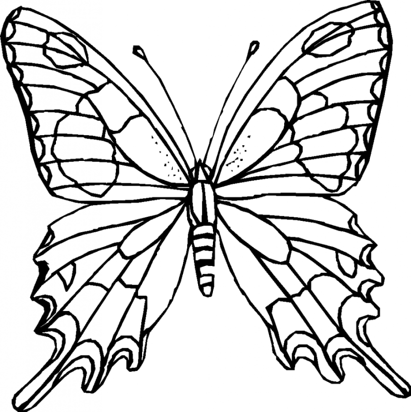 butterfly clipart to color monarch butterfly clip art clipartsco to clipart butterfly color