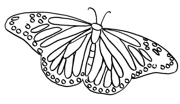 butterfly clipart to color printable butterfly coloring pages for kids cool2bkids butterfly to clipart color