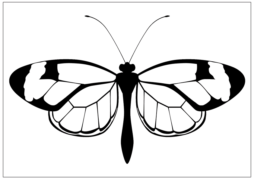 butterfly clipart to color printable fun butterfly coloring pages for kids art hearty color clipart to butterfly