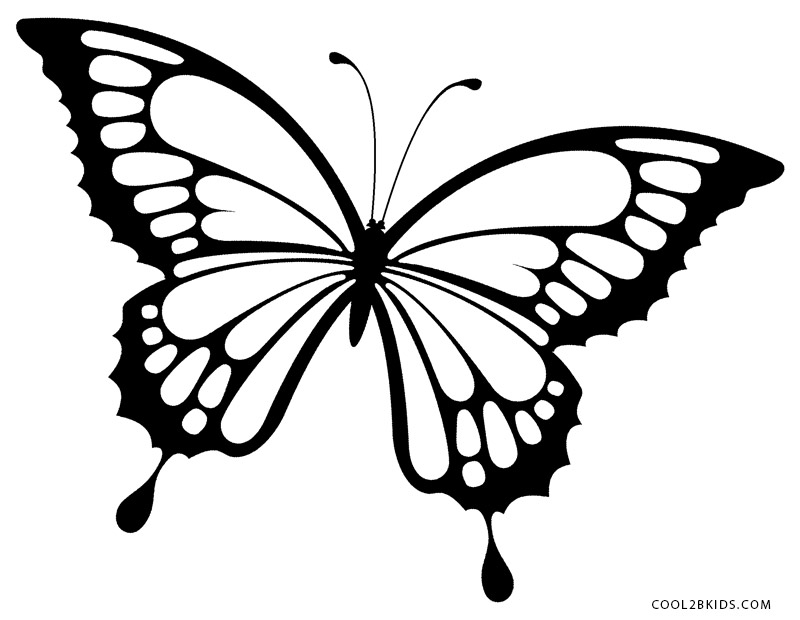 butterfly colouring pics butterfly coloring pages coloringpages1001com pics butterfly colouring