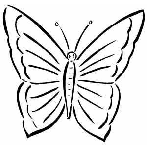 butterfly colouring pics butterfly coloring pages colouring butterfly pics