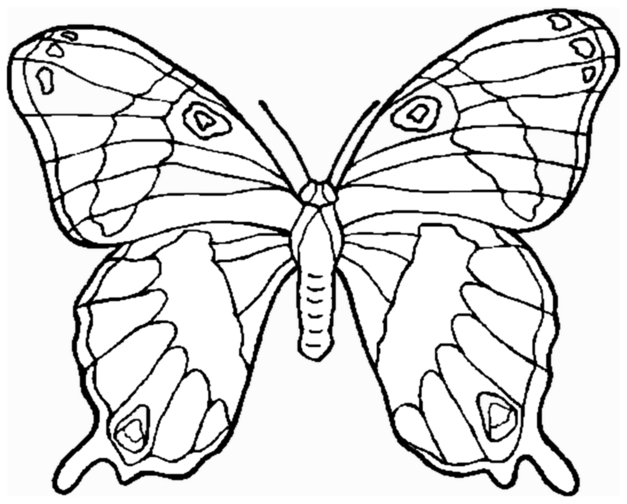 butterfly colouring pics learn to coloring june 2012 colouring butterfly pics