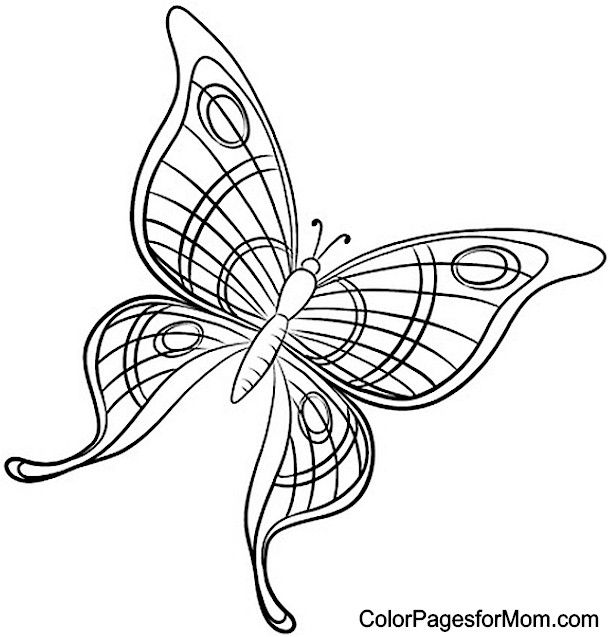 butterfly mosaic coloring page butterfly mosaic coloring sheet mosaic page butterfly coloring