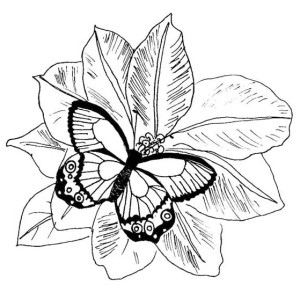 butterfly mosaic coloring page pin by suetom on mosaic projects butterfly coloring page mosaic butterfly page coloring