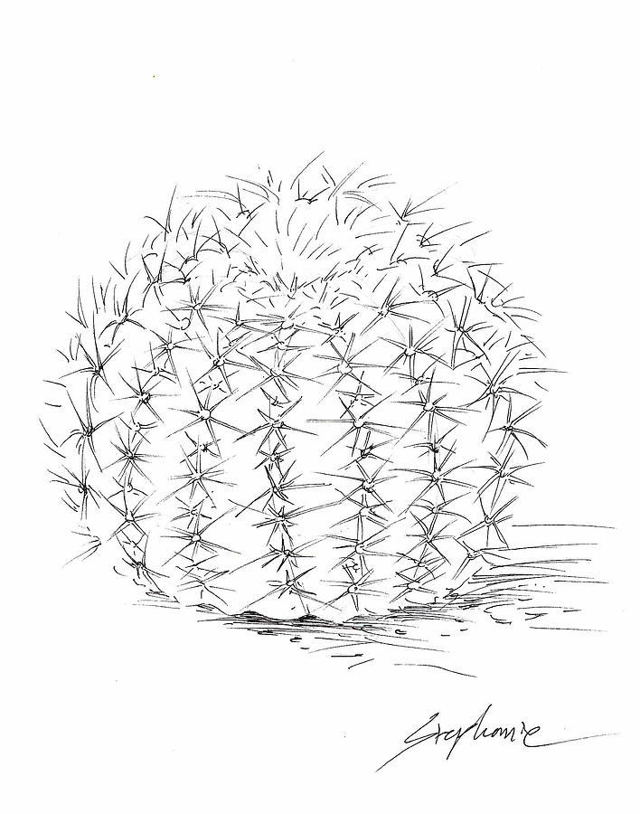 cactus drawing quirky cactus line drawing bold contemporary art by drawing cactus