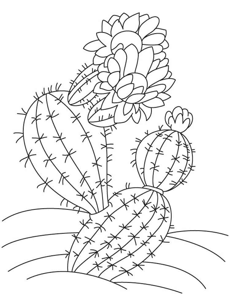 cactus printable coloring sheets desert cactus coloring page cactus embroidery pattern coloring cactus printable sheets