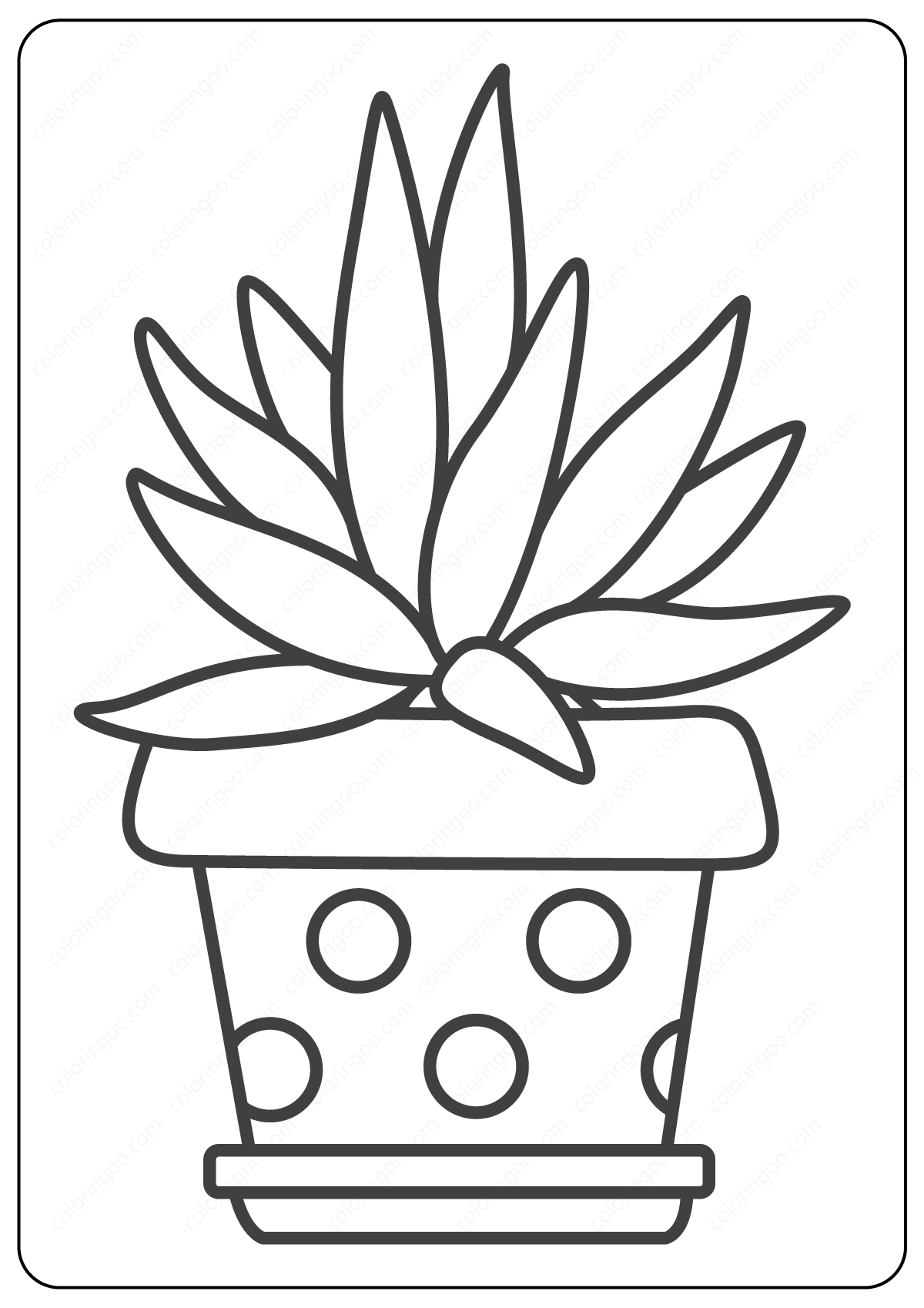 cactus printable coloring sheets flowering cactus plants coloring page download free sheets printable coloring cactus