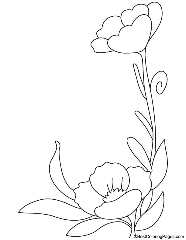 california poppy coloring page amazing picture of california poppy coloring page kids california coloring page poppy