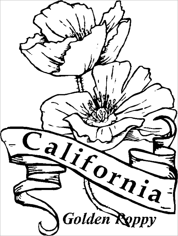 california poppy coloring page garland of california poppy coloring page kids play color poppy page coloring california