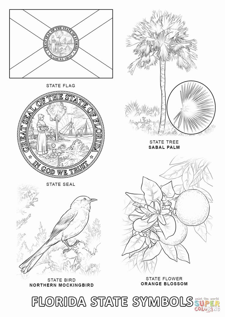 california state flower state map of california coloring sheet for kids at flower california state