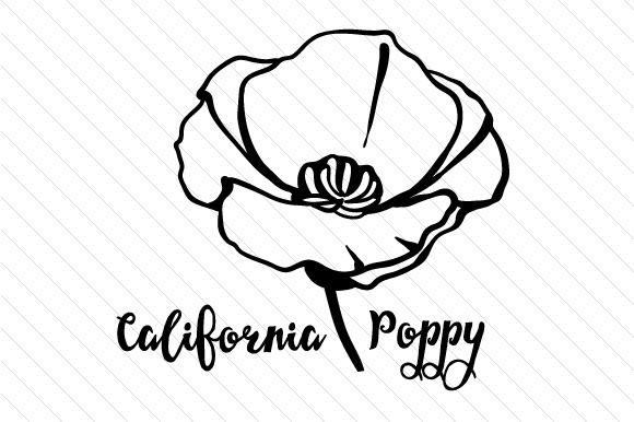 california state flower wisconsin coloring page state of wisconsin outline flower california state
