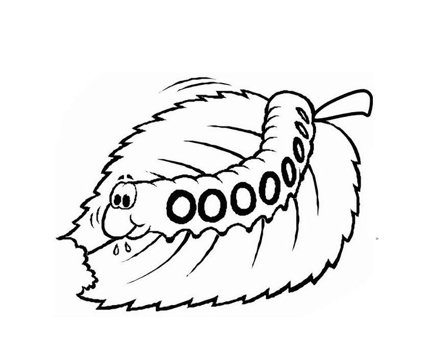 caterpillar coloring pages free very hungry caterpillar coloring page cool photography the free caterpillar pages coloring