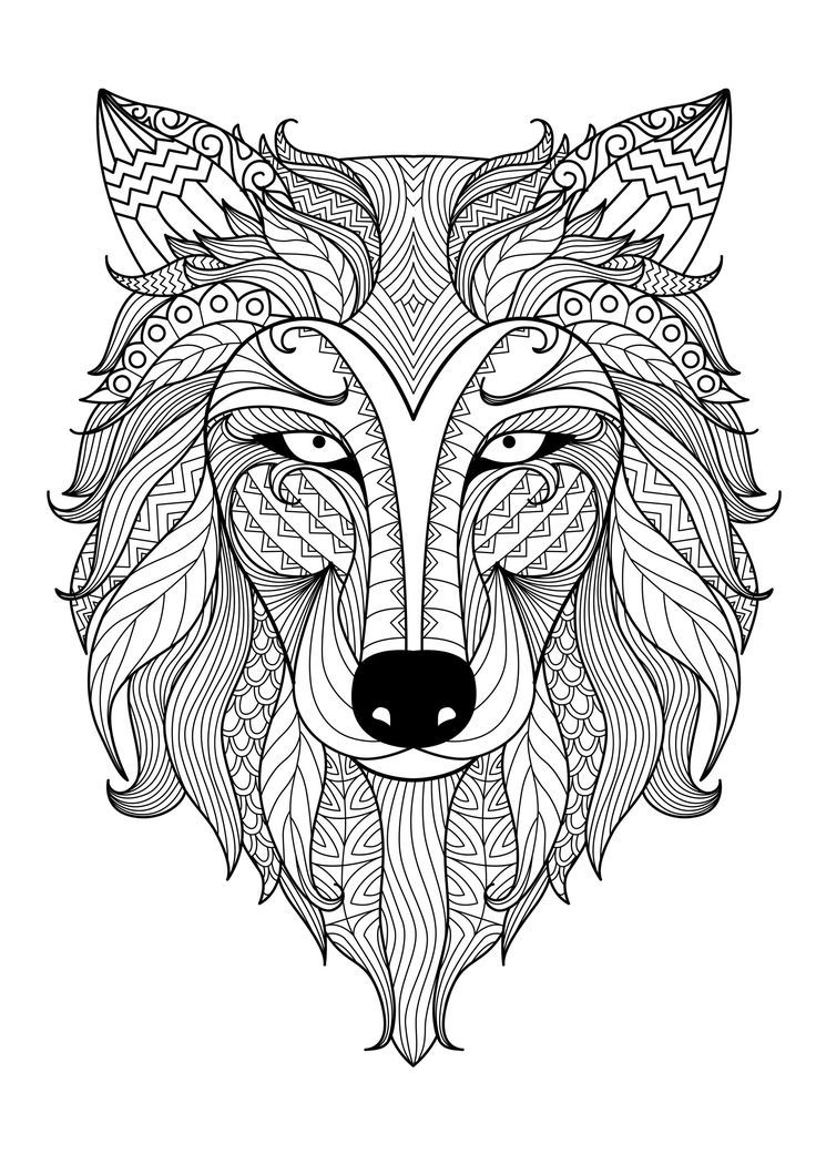 cheetah coloring pages for adults animal coloring pages for adults best coloring pages for adults cheetah coloring pages for
