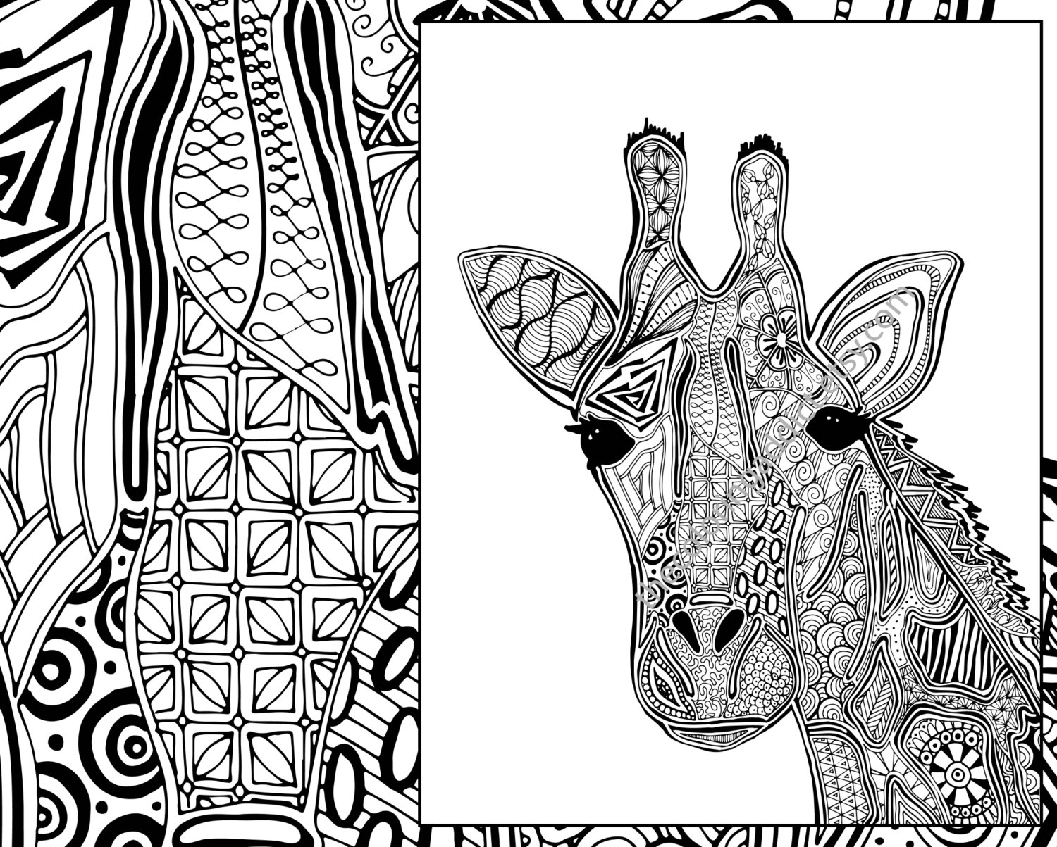 cheetah coloring pages for adults animal coloring pages for adults best coloring pages for adults for pages cheetah coloring
