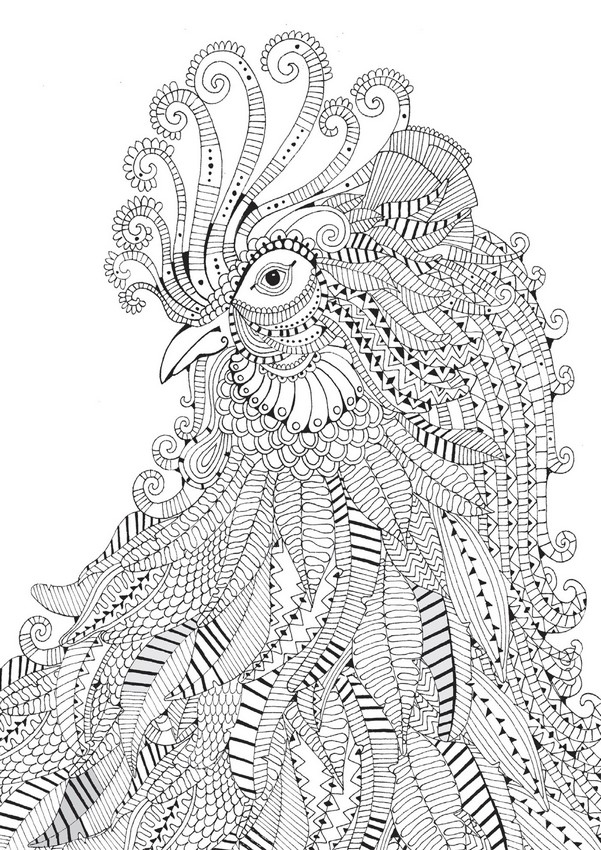 cheetah coloring pages for adults animal coloring pages for adults best coloring pages for coloring adults for cheetah pages