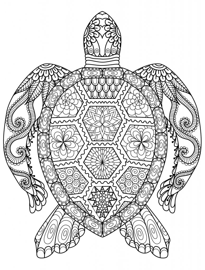 cheetah coloring pages for adults animal coloring pages for adults best coloring pages for coloring cheetah pages adults for