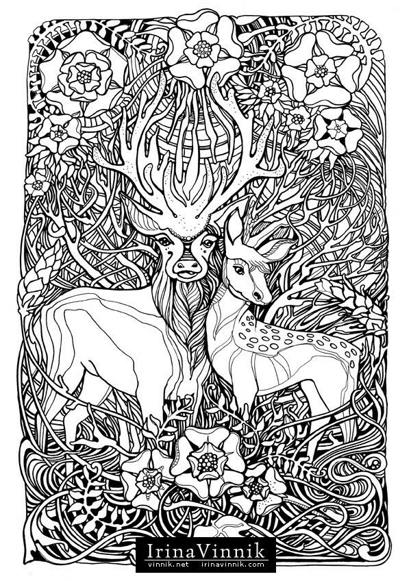cheetah coloring pages for adults animal coloring pages for adults best coloring pages for for pages coloring adults cheetah
