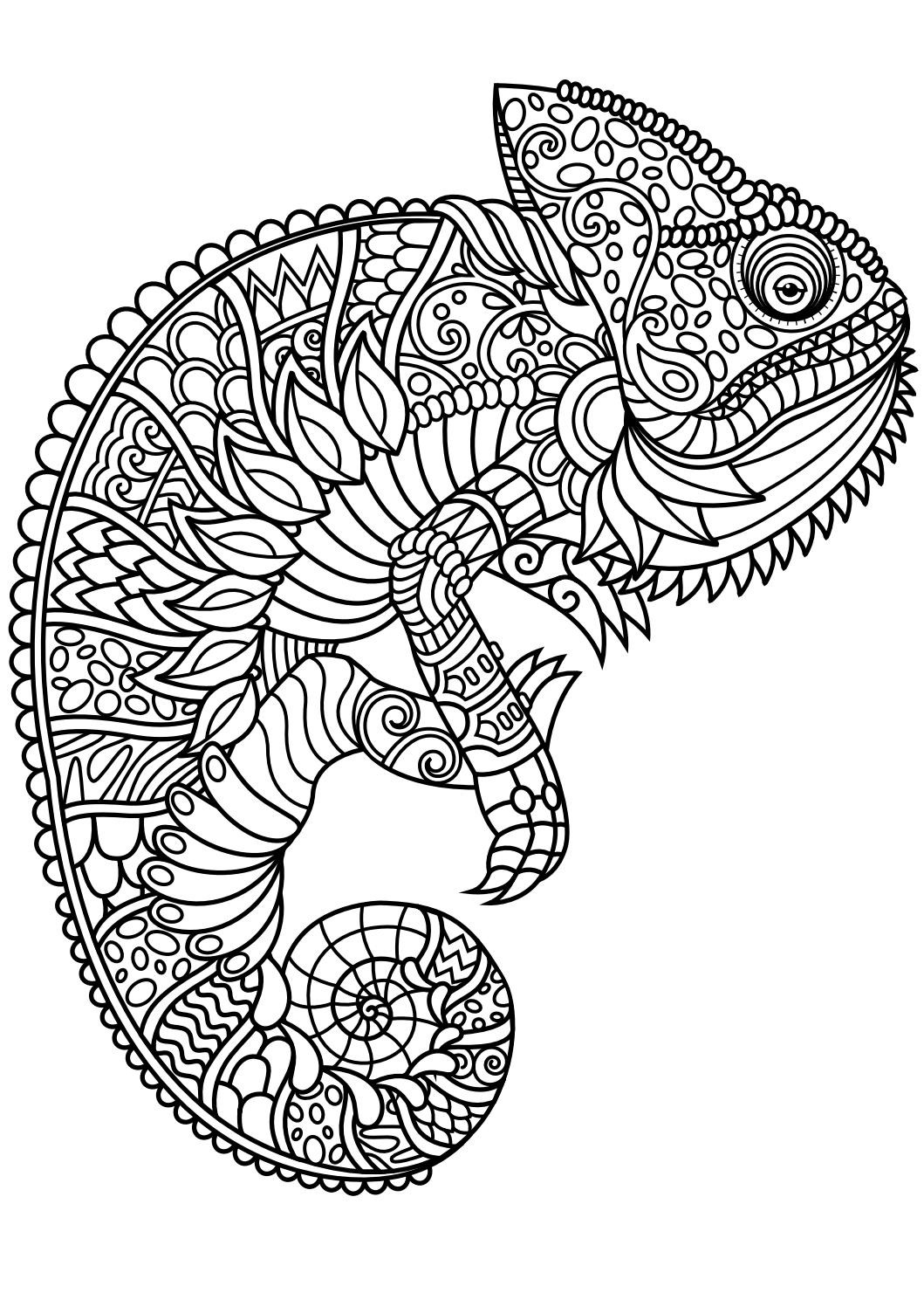 cheetah coloring pages for adults animal coloring pages for adults best coloring pages for pages adults for cheetah coloring