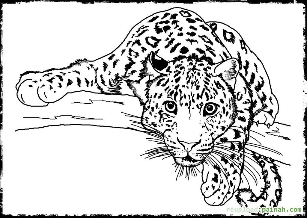 cheetah coloring pages for adults puppy coloring page adult coloring instant by wordsremember for adults pages coloring cheetah
