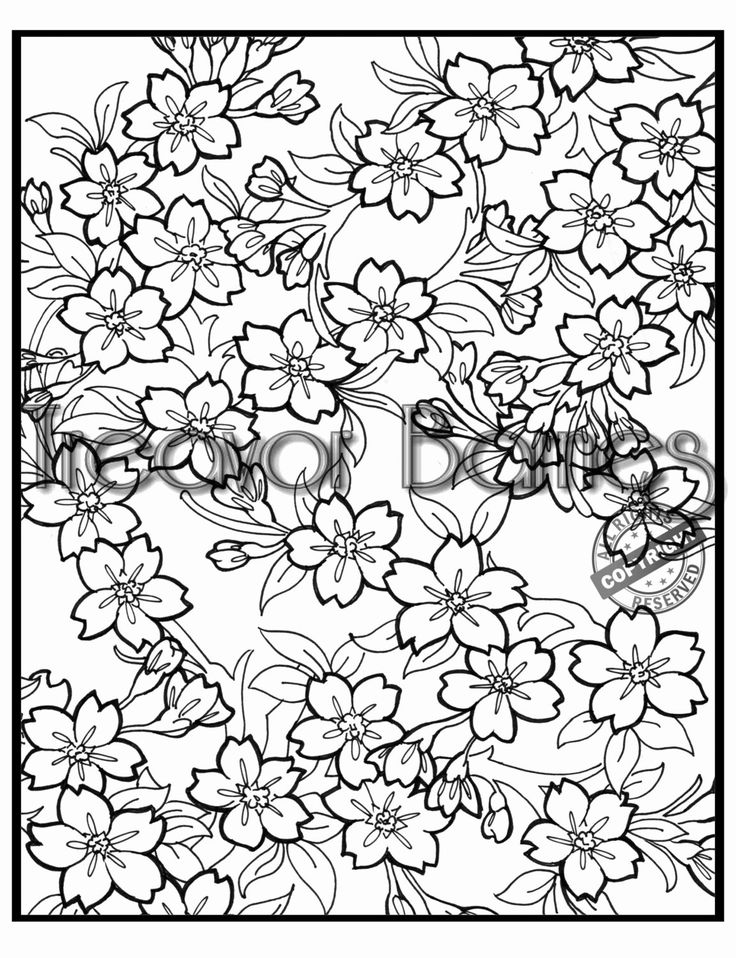cherry blossom coloring pages cherry blossom coloring page coloring home coloring cherry blossom pages