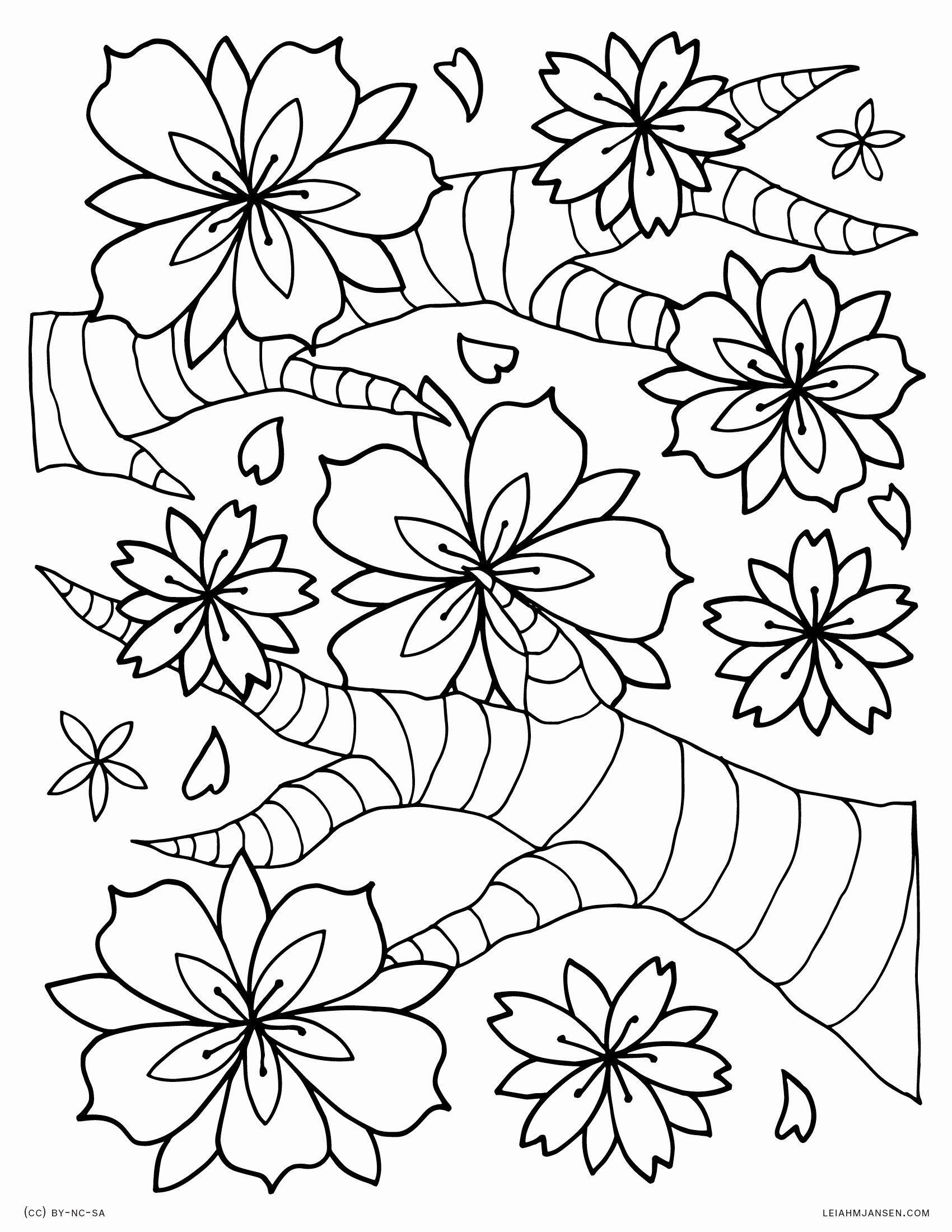 cherry blossom coloring pages cherry blossom coloring pages coloring home cherry coloring blossom pages 1 1