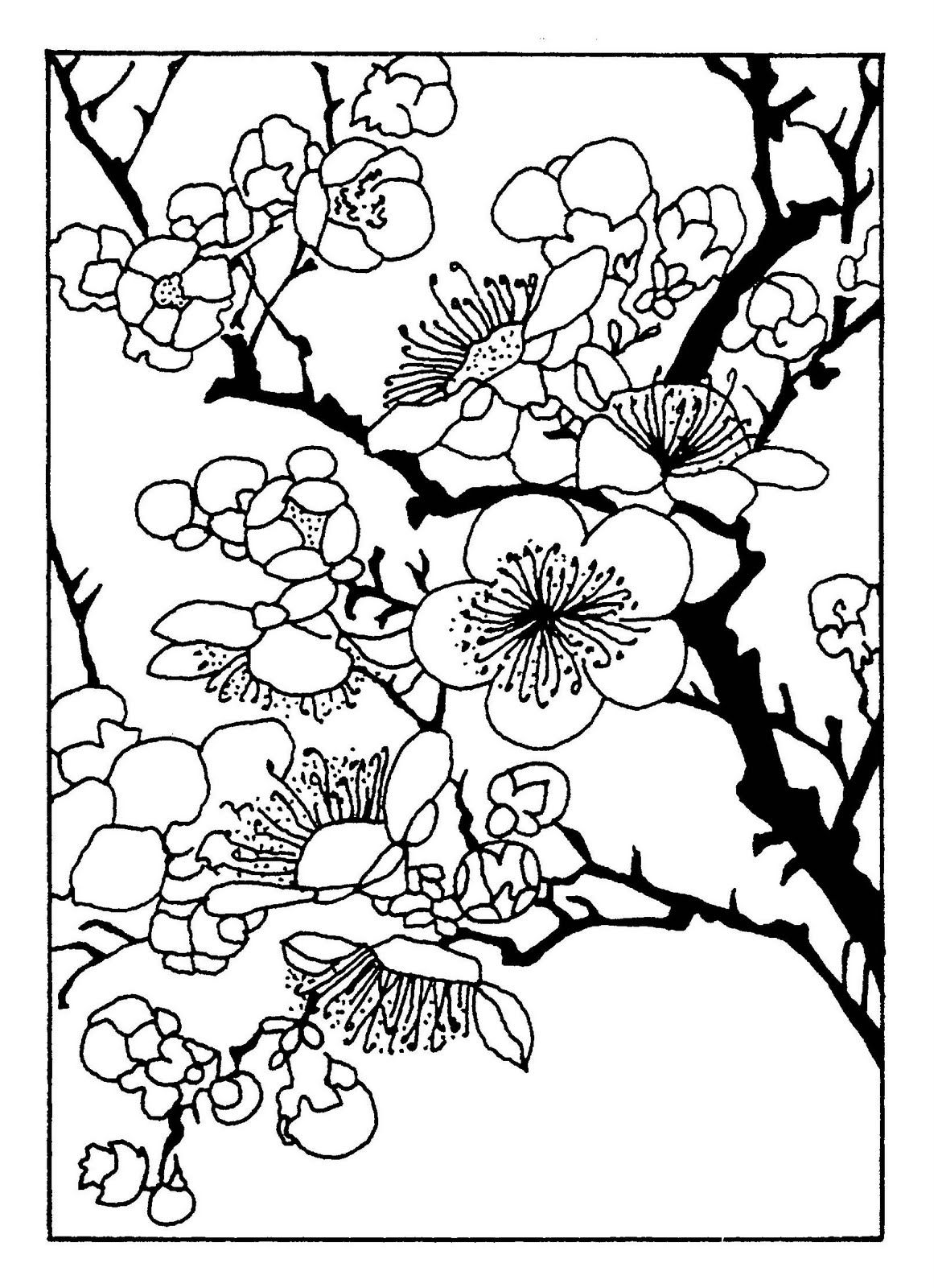 cherry blossom coloring pages cherry blossom floral coloring page stock illustration cherry pages coloring blossom