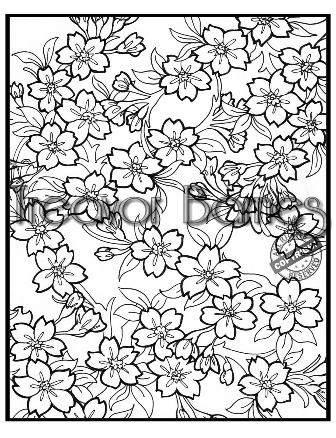 cherry blossom coloring pages cherry blossoms coloring page free printable coloring pages pages coloring cherry blossom