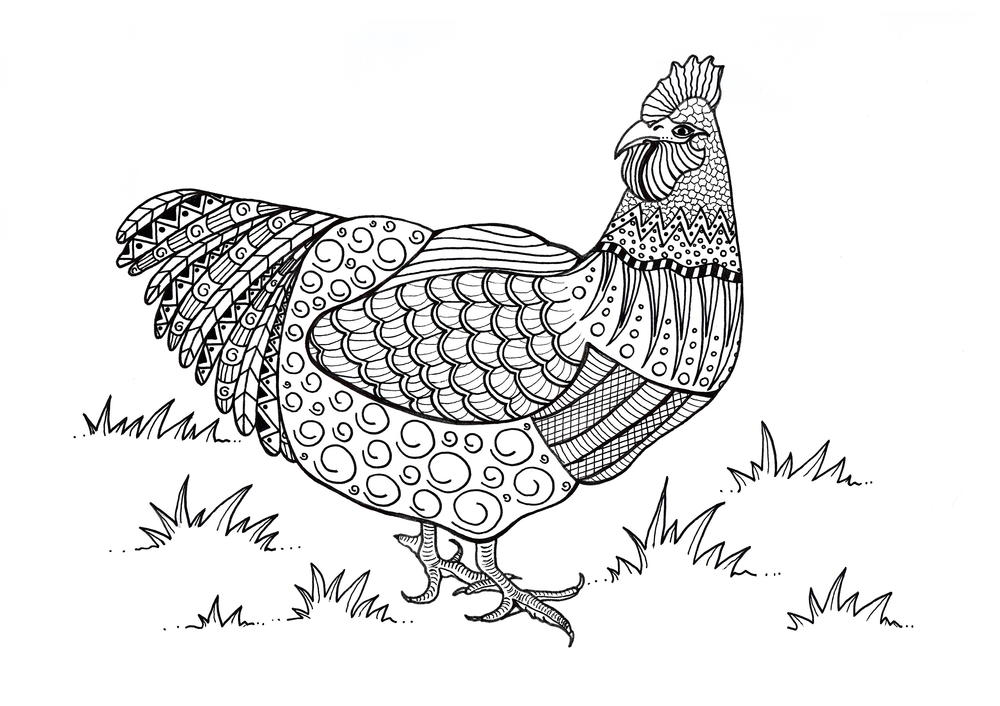 chicken coloring pages fun craft for kids printable cartoon chicken coloring pages coloring chicken
