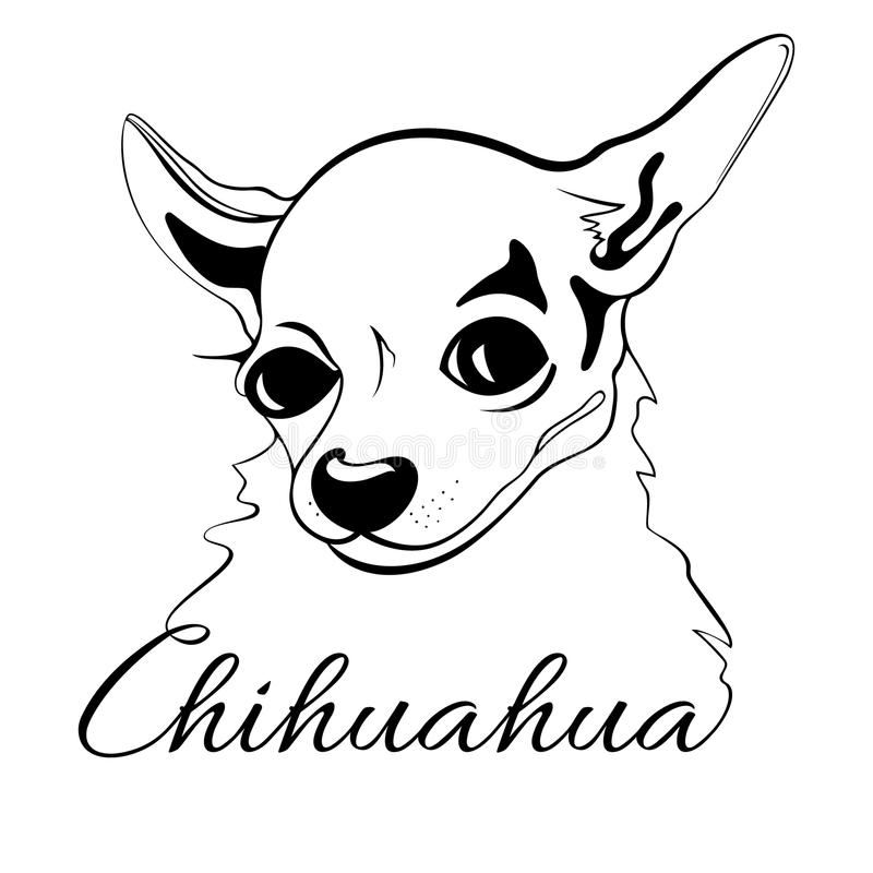 chihuahua outline 1000 images about outline drawings on pinterest outline chihuahua