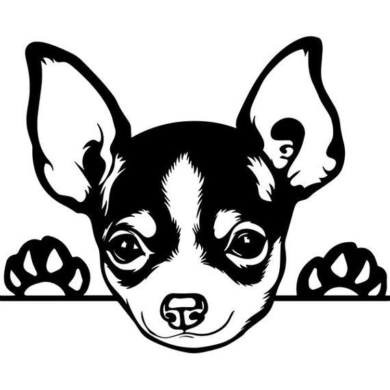 chihuahua outline black and white chihuahua clipart 12 free cliparts outline chihuahua
