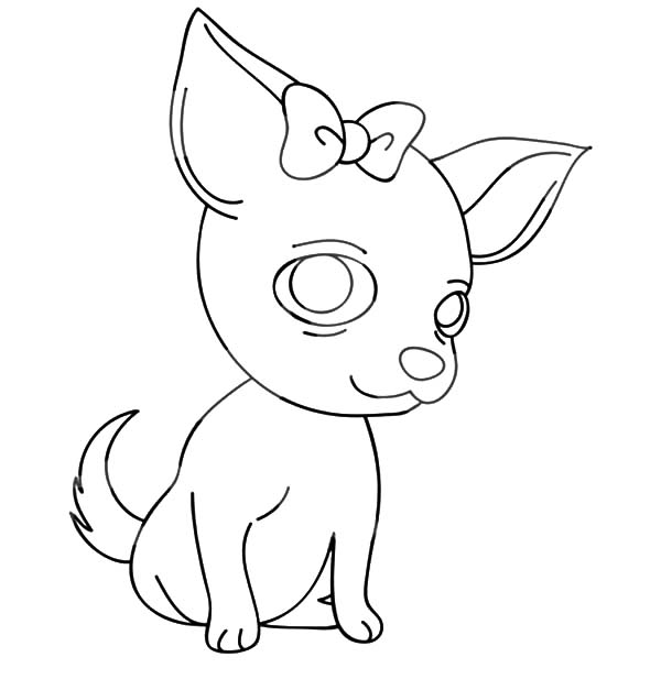chihuahua outline chihuahua dog outline coloring pages outline chihuahua