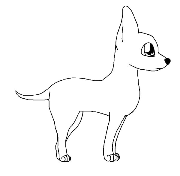 chihuahua outline chihuahua dog posing coloring pages netart chihuahua outline