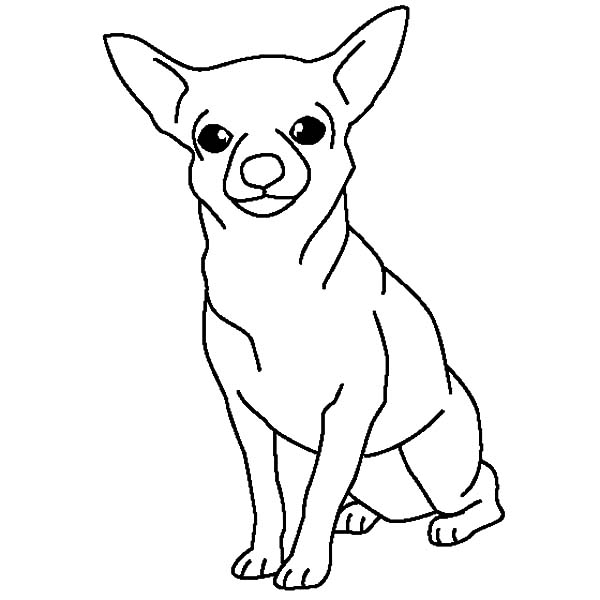 chihuahua outline dog silhouette tattoo at getdrawings free download outline chihuahua