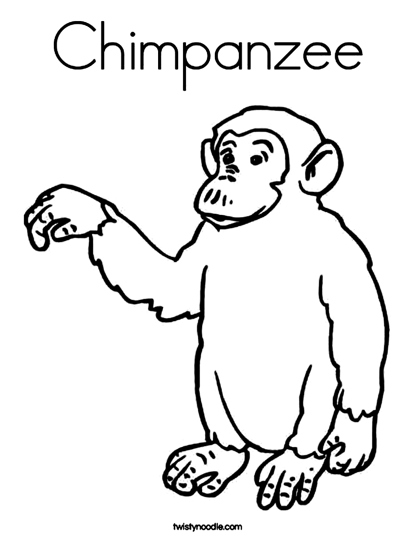 chimpanzee pictures to print 70 animal colouring pages free download print free print to pictures chimpanzee