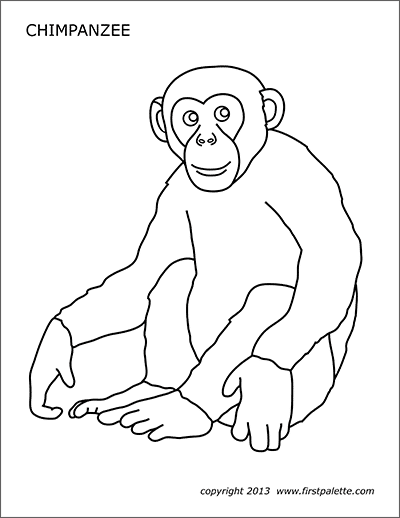 chimpanzee pictures to print coloring pages of monkeys printable activity shelter print to pictures chimpanzee