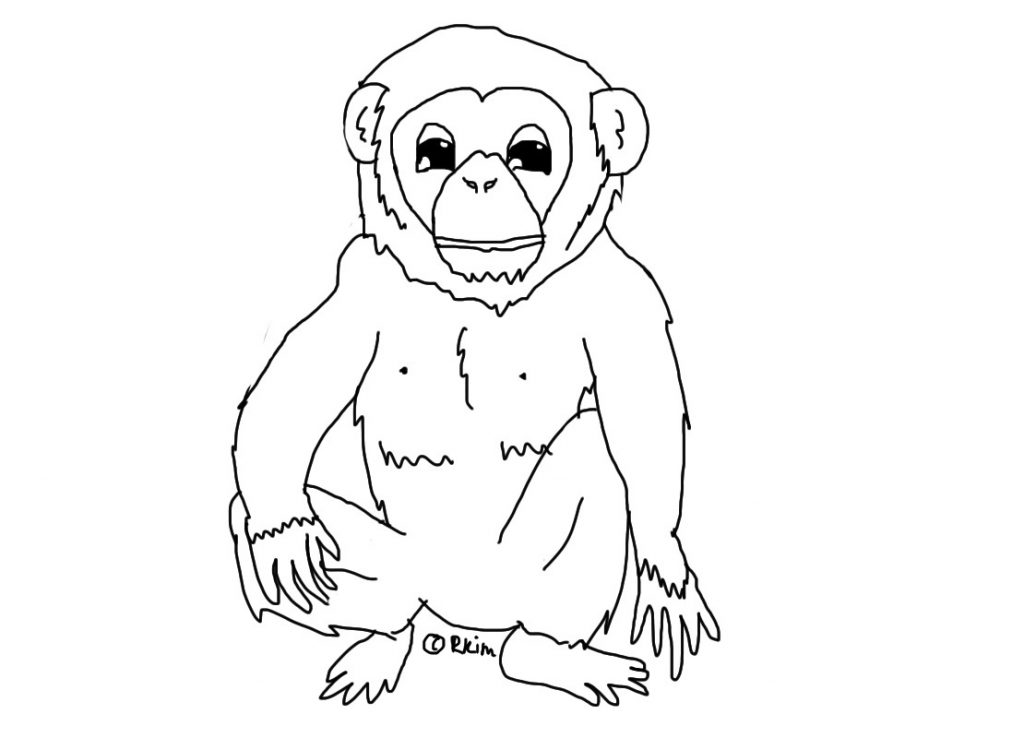 chimpanzee pictures to print free printable chimpanzee coloring pages for kids to chimpanzee pictures print
