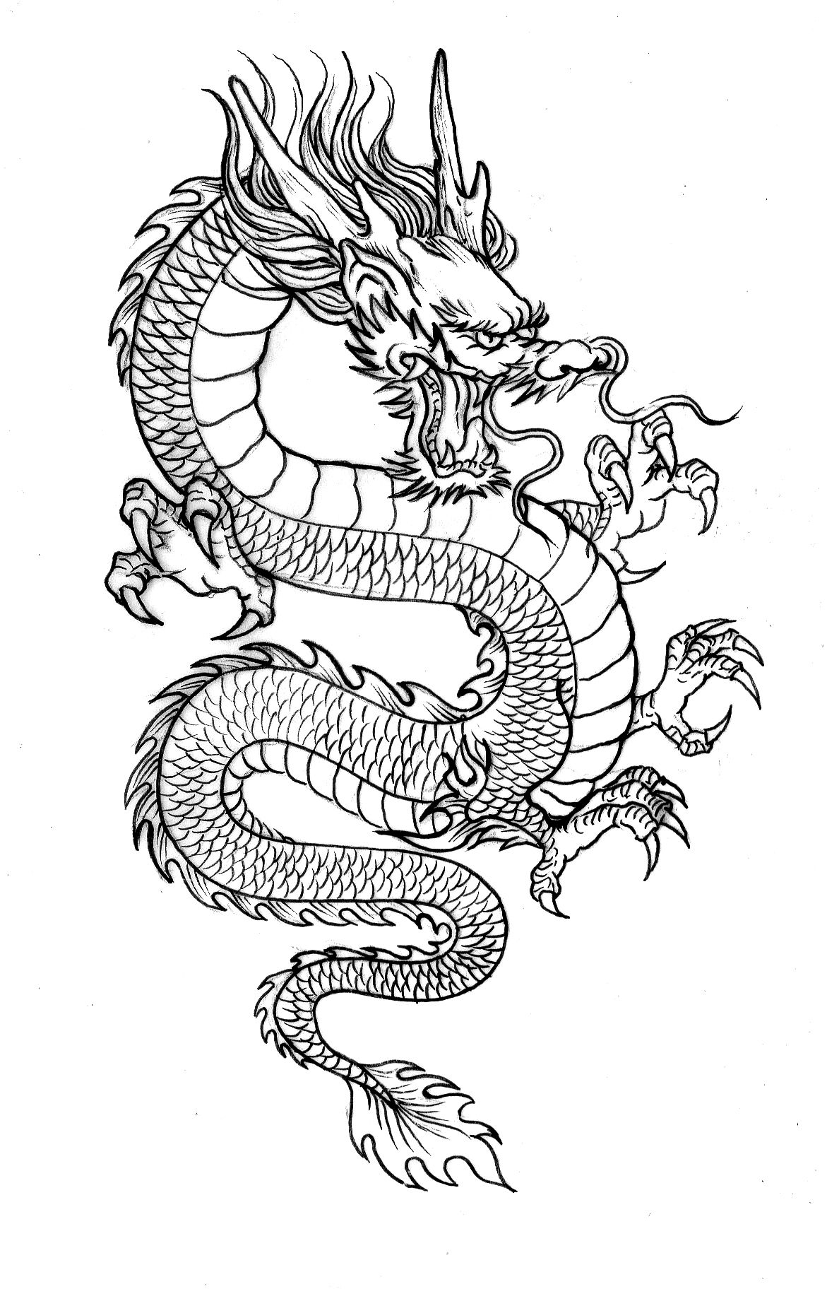 chinese dragon outline chinese dragon outline clipartsco outline dragon chinese