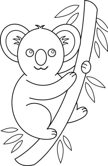 clipart coloring pages koala coloring page free clip art pages coloring clipart