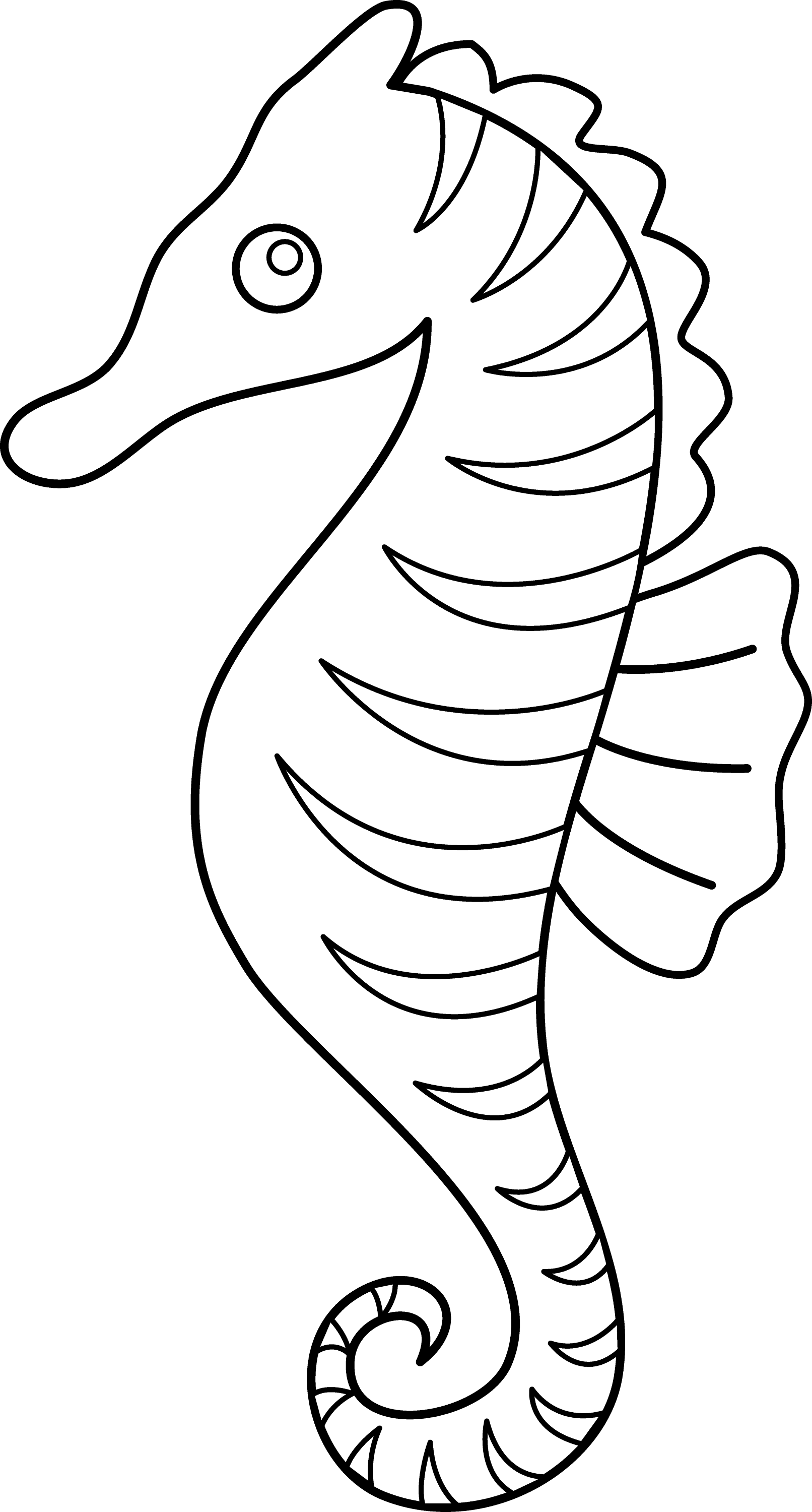 clipart coloring pages seahorse coloring pages kidsuki coloring pages clipart