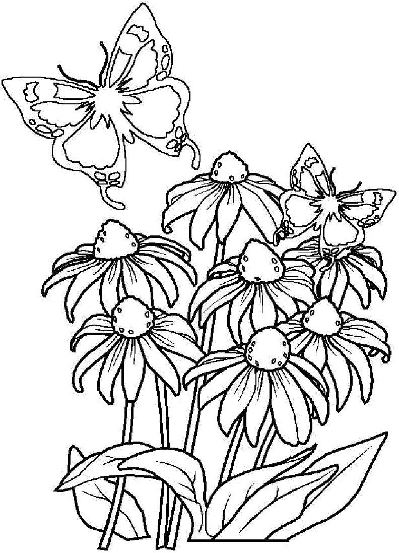 color page flower bouquet of flowers coloring pages for childrens printable page color flower