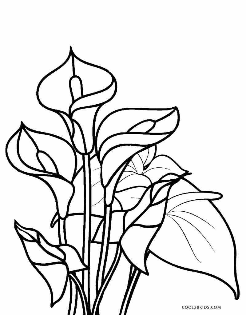 color page flower flower plants in blossom coloring page coloring sky flower page color