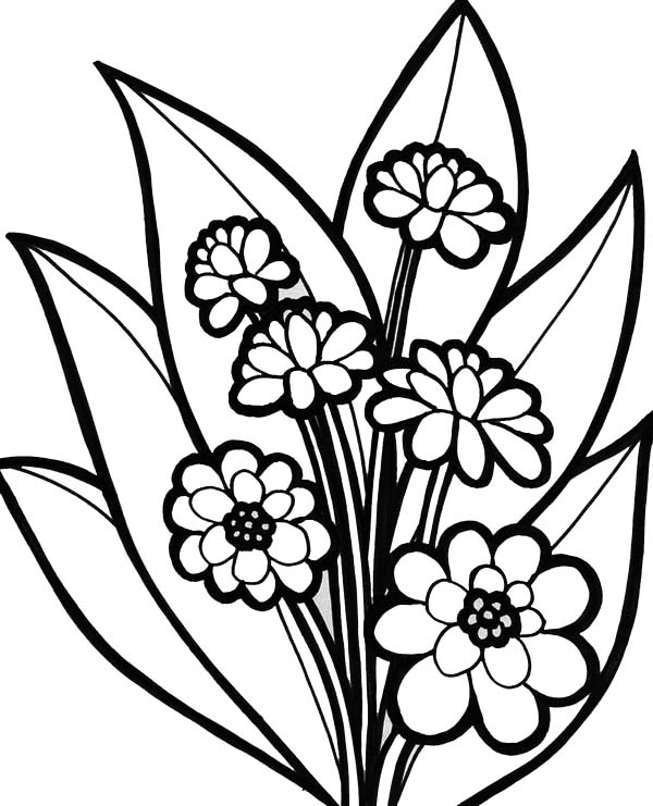 color page flower free printable flower coloring pages for kids best color flower page