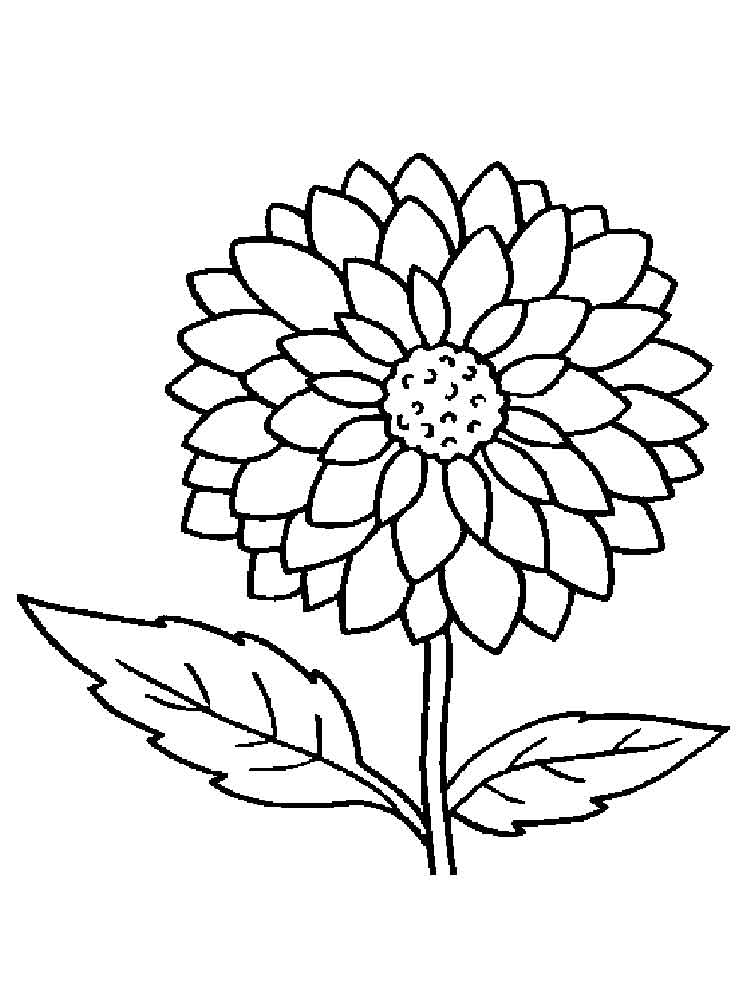 color page flower free printable flower coloring pages for kids best color page flower