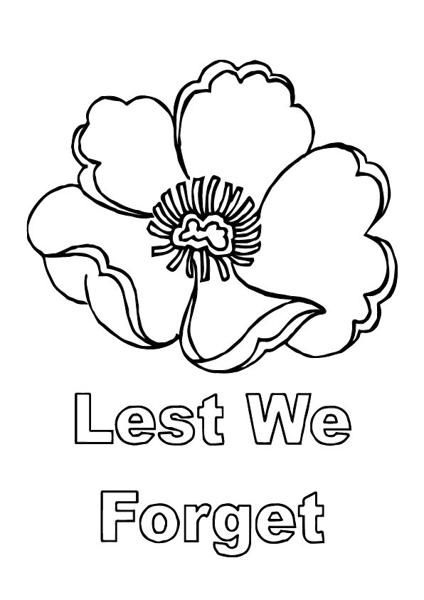 color poppy ww1 poppies what the different colour remembrance day poppy color
