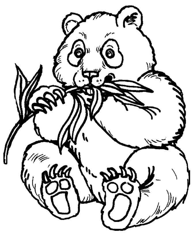 coloring animal for kids zebra coloring pages free printable kids coloring pages for animal coloring kids
